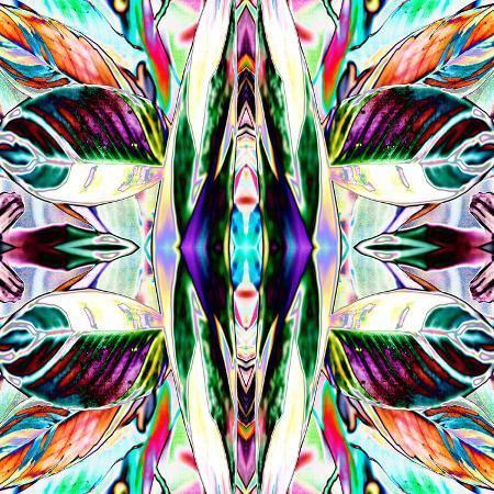 rose-anne-colavito-featherleaf