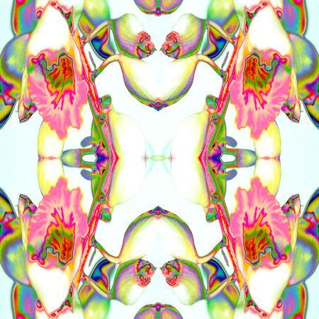 rose-anne-colavito-ginger2