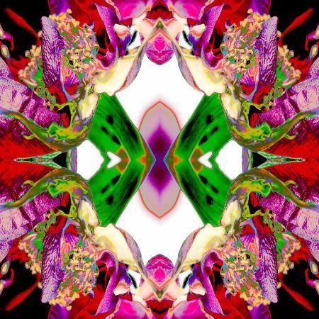 rose-anne-colavito-neon-rose-redux2