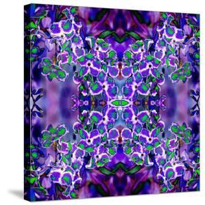 Violet Stars 3 by Rose Anne Colavito