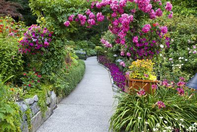 Rose Garden at Butchard Gardens in Full Bloom, Victoria, British Columbia, Canada-Terry Eggers-Photographic Print