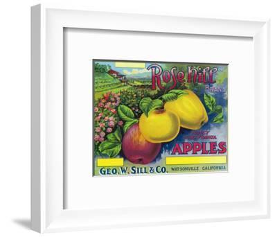 Rose Hill Brand Apple Label, Watsonville, California-Lantern Press-Framed Art Print