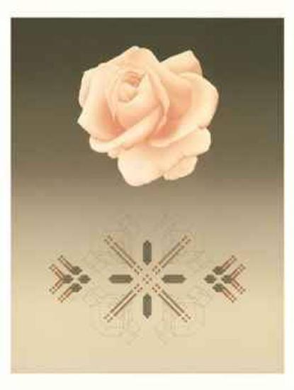 Rose Matrix VI-David Haiden-Limited Edition