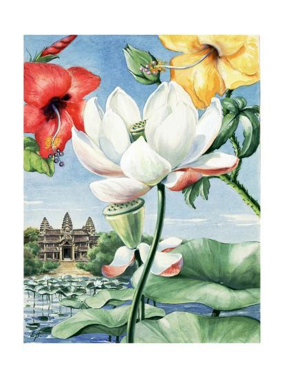 Rose-Of-China Hibiscus, East Indian Lotus, and Yellow Hibiscus-Else Bostelmann-Giclee Print