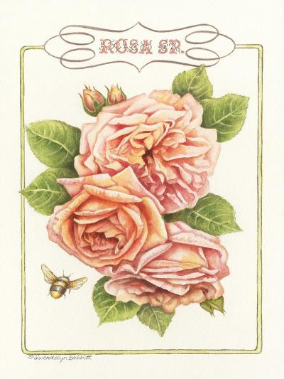 Rose Species-Gwendolyn Babbitt-Art Print
