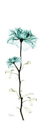 https://imgc.artprintimages.com/img/print/rose-tower_u-l-pyjsq60.jpg?p=0