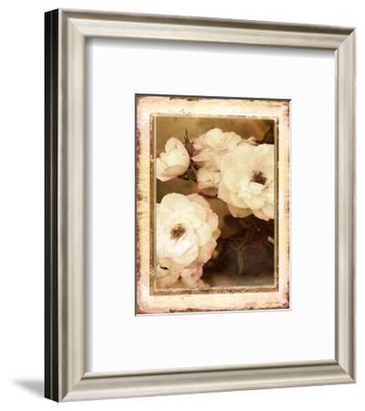 Rose- White-Linda Maron-Framed Art Print