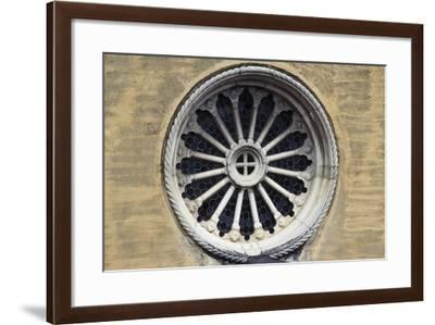 Rose Window--Framed Giclee Print