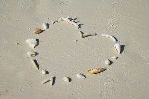 Romantic Message on Beach in Coral and Shells. by Rosemary Calvert