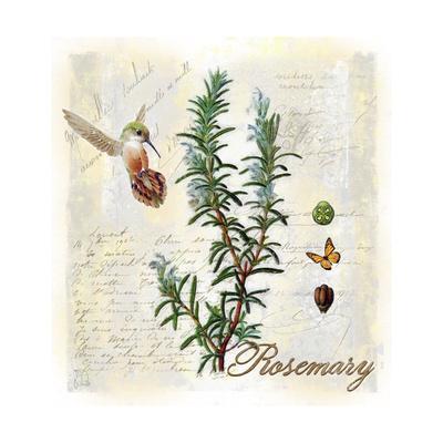 https://imgc.artprintimages.com/img/print/rosemary-herb_u-l-pyo4h60.jpg?p=0