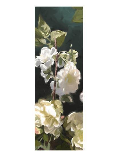 Roses 04-Rick Novak-Art Print