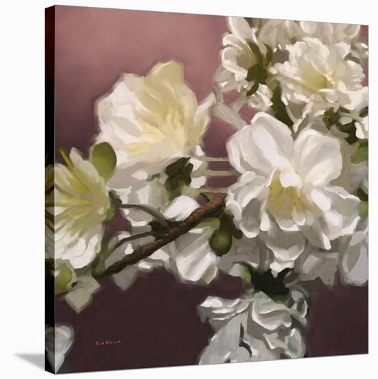 Roses 15-Rick Novak-Stretched Canvas Print