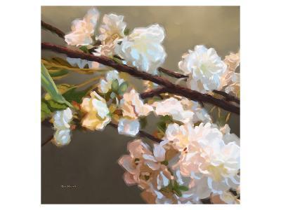 Roses 17-Kurt Novak-Art Print