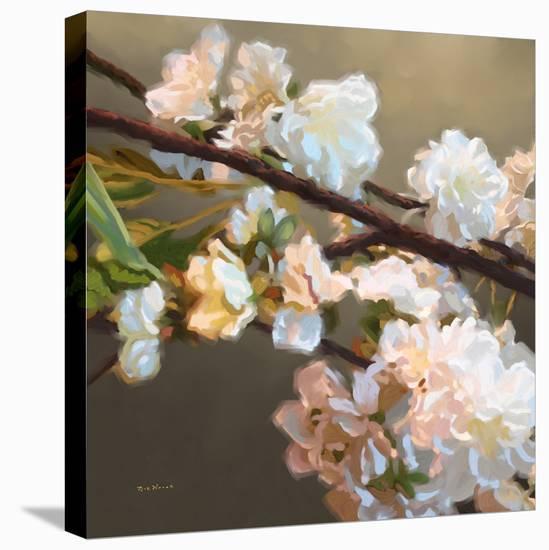 Roses 17-Rick Novak-Stretched Canvas Print