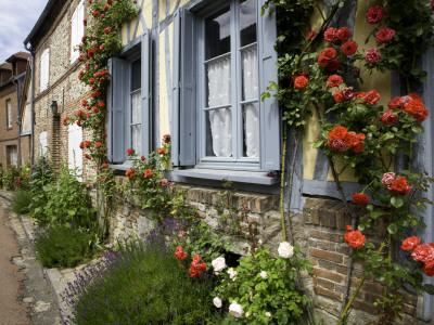 https://imgc.artprintimages.com/img/print/roses-and-flowers-and-half-timbered-houses-along-rue-du-logis-du-roy_u-l-pd5w5o0.jpg?p=0