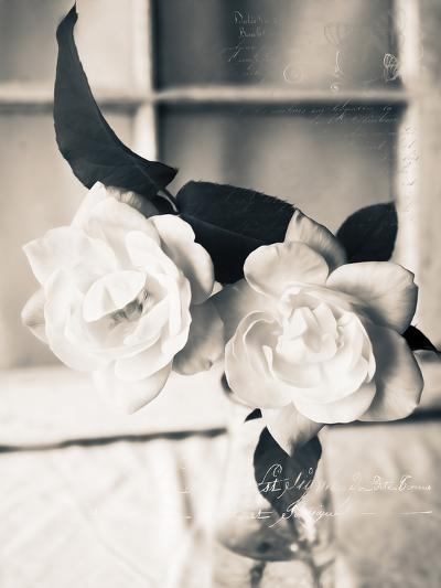 Roses in a Vase BW-Bob Rouse-Photographic Print