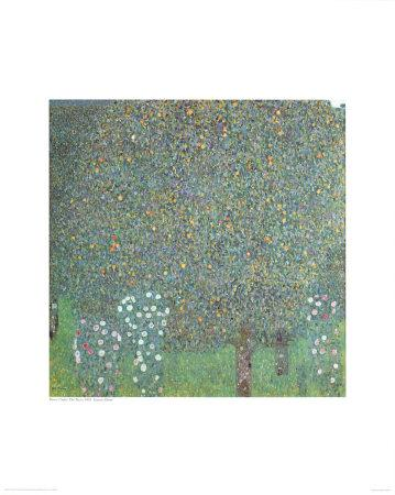 https://imgc.artprintimages.com/img/print/roses-under-the-trees_u-l-emqpj0.jpg?p=0