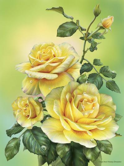 Roses Yellow-Olga And Alexey Drozdov-Giclee Print