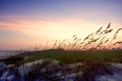 Rosey Sunset II-Alan Hausenflock-Photographic Print