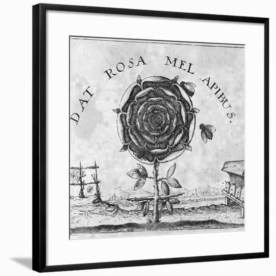 Rosicrucian Mystical Symbol-Middle Temple Library-Framed Photographic Print