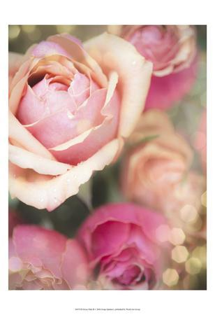 https://imgc.artprintimages.com/img/print/rosie-pink-ii_u-l-f8swmy0.jpg?p=0