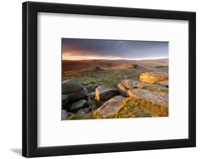 Moorland View at Belstone with Granite Outcrops, Near Okehampton, Dartmoor Np, Devon, England, UK