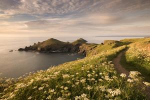 The Rumps, Pentire Head, Devon Coastal Path, Cornwall, UK by Ross Hoddinott