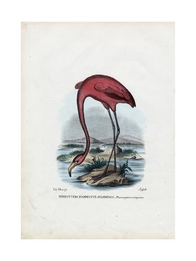 Rosy, 1863-79-Raimundo Petraroja-Giclee Print