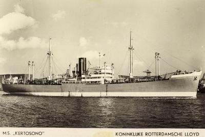 Rotterdamsche Lloyd, KRL, Dampfer M.S. Kertosono--Giclee Print
