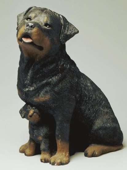 Rottweiler and Puppy-Sandra Brue-Giclee Print