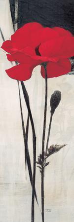 https://imgc.artprintimages.com/img/print/rouge-floral-2_u-l-pi4boi0.jpg?artPerspective=n