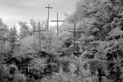 Rough Wooden Crosses and Peeling Signs Bearing Bible Scripture-Carol Highsmith-Photo