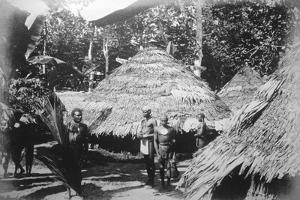 Round Houses of Natives at Timotu, Santa Cruz, 1892