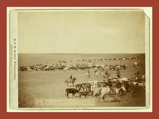 Round-Up Scenes on Belle Fouche [Sic] in 1887-John C. H. Grabill-Giclee Print