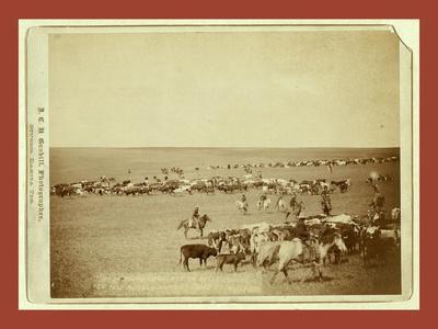 https://imgc.artprintimages.com/img/print/round-up-scenes-on-belle-fouche-sic-in-1887_u-l-puomqg0.jpg?p=0