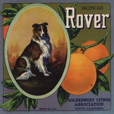 https://imgc.artprintimages.com/img/print/rover-brand-tustin-california-citrus-crate-label_u-l-q1grbog0.jpg?p=0