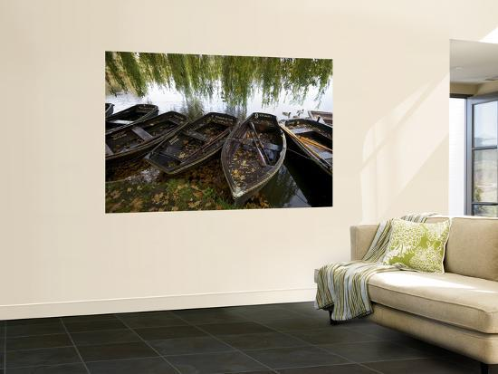 Row Boats Moored at Lakeside at Hever Castle-Doug McKinlay-Giant Art Print