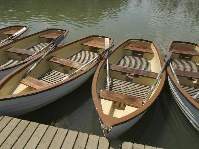 Row of Docked Rowboats--Photographic Print