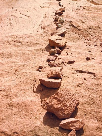 Row of Red Rocks on Red Sand-Rob Lang-Photographic Print
