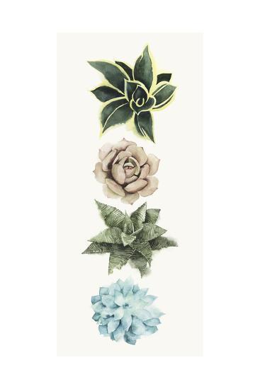 Row of Succulents I-Grace Popp-Art Print