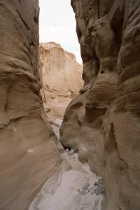 White Canyon, Sinai Desert by Rowan Castle