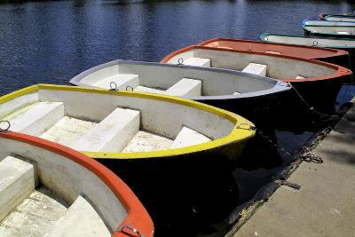 Rowing Boats for Hire-Kim Ludbrook-Photographic Print