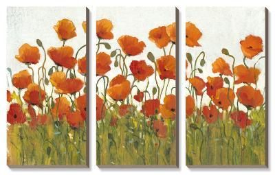 Rows of Poppies I-Tim O'toole-Canvas Art Set