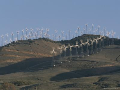 Rows of Spinning Wind Turbines Generate Electricity-Marc Moritsch-Photographic Print