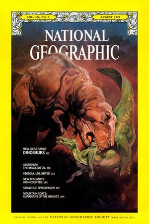 Cover of the August, 1978 National Geographic Magazine by Roy Andersen