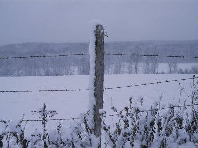 A Wire Fence Cordons off a Snow-Covered Field