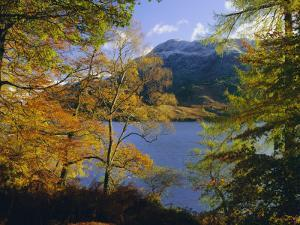 Autumn Trees at Ullswater, Lake District National Park, Cumbria, England, UK, Europe by Roy Rainford