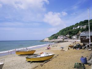 Beach, Ventnor, Isle of Wight, England, United Kingdom by Roy Rainford