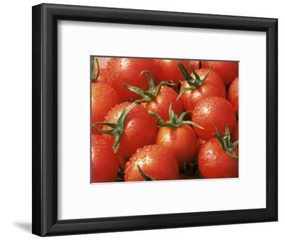Close-Up of Tomatoes, England, United Kingdom