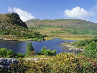 Ring of Kerry, Between Upper Lake and Muckross Lake, Killarney, Munster, Republic of Ireland (Eire)